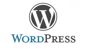 Webprogrammierung | WORDPRESS | Logo